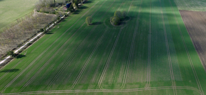 Droonivaade põllule